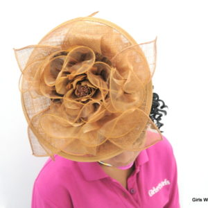 Brown Fascinator-0
